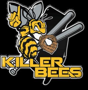 Killer Bees Trading Pins