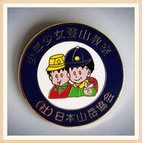 Hard Enamel School Pin