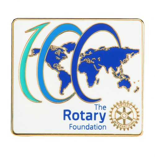 Rotary Foundation Pins