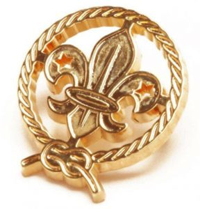 Gold scout lapel pins