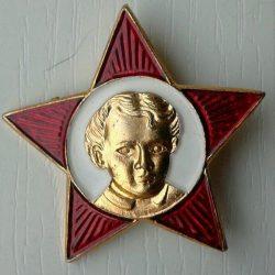 Childhood star pins
